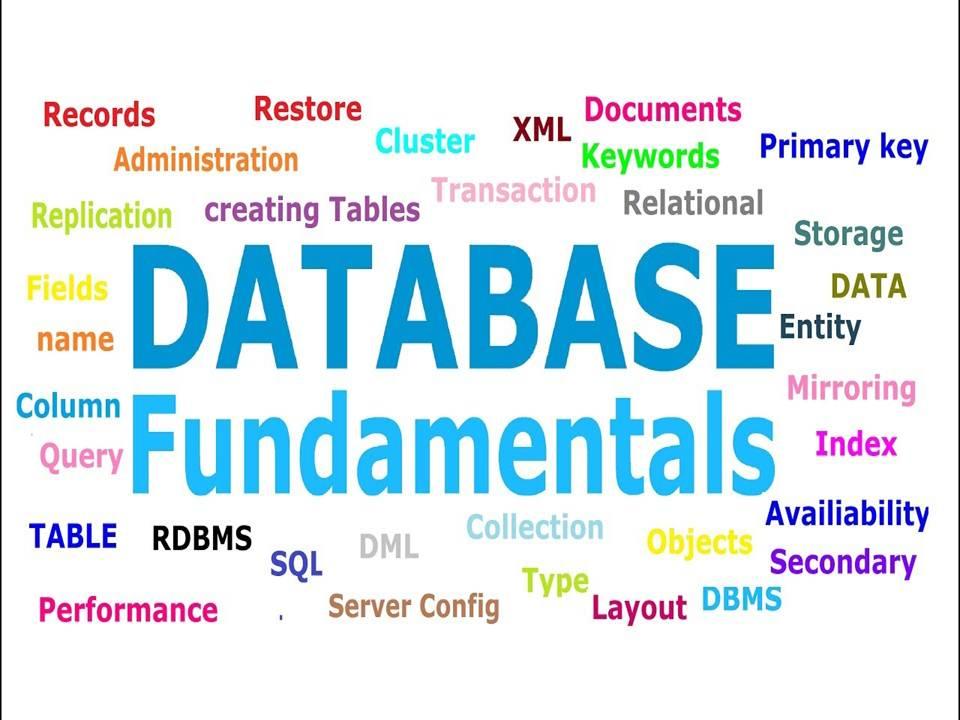 Database Testing Fundamentals