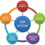 ERP Domain Basics