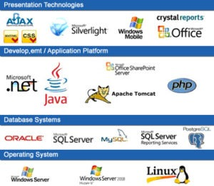 Introduction to Software Technologies