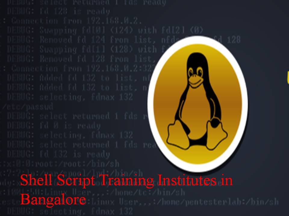 Shell Script Training Institutes in Bangalore - Software Testing